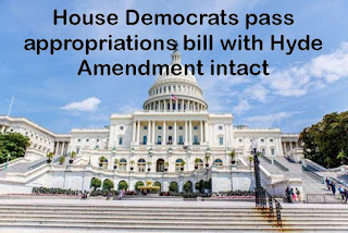 House Democrats pass appropriations bill with Hyde Amendment intact