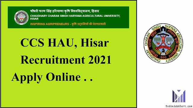 HAU Hisar Recruitment 2021 Apply online