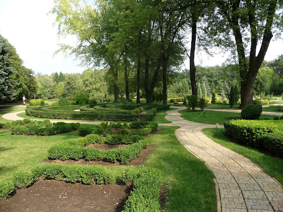 Донецк. Ботанический сад. Топиар