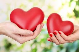 Pengertian, Fungsi, dan Bagian-Bagian Hati