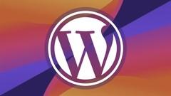 All-Arounder WordPress Expert for 2020!