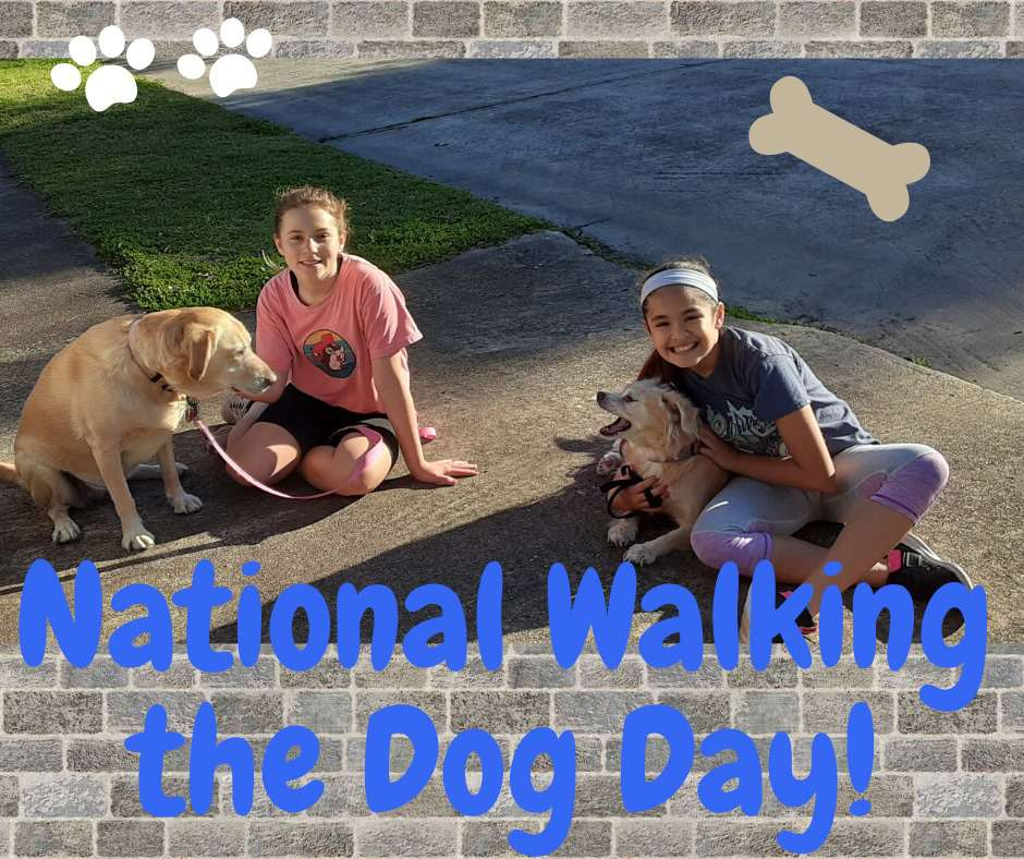 National Walking the Dog Day Wishes for Instagram