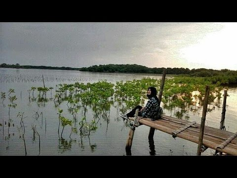 Wisata Pulau Tiban