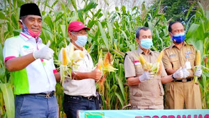 Syamsuar: Riau Kini Menuju Swasembada Pangan
