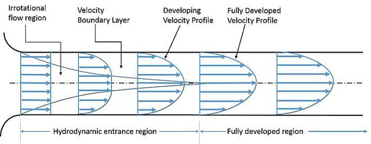 Capa límite en tubos rectos y flujo completamente desarrollado