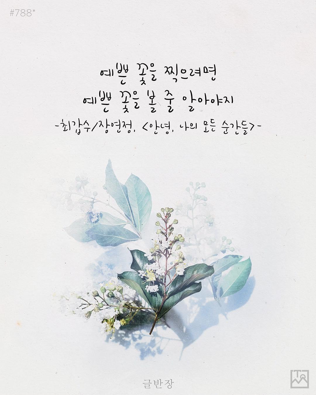 예쁜 꽃을 찍으려면 - 최갑수/장연정, <안녕, 나의 모든 순간들>