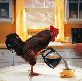 fowl serving coffee