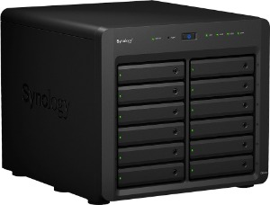 Synology NAS 12 HD's