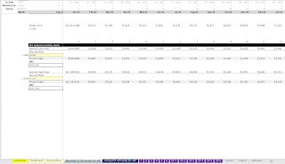 self storage monthly DCF Analysis
