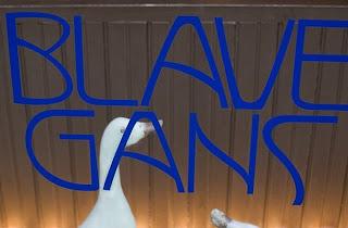 Blaue Gans