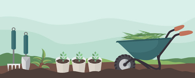 An illustration of garden tools and white pots on brown soil next to blue-green wheelbarrow