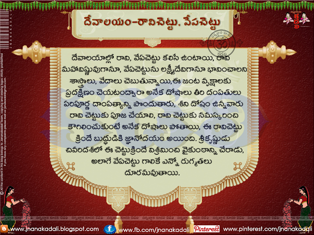 Importance of Ravi Chettu in Temple Dharmasandehaalu in telugu,Ravi chettu mantram in telugu for couples for childrens,Ravi chettu mantra for getting married,Raavi chettu in telugu in English with examples,Health Benefits of Peepal Tree in Telugu,Mythology of the Pipal tree and its importance in Telugu Dharmasandeahaalu,What do you call raavi chettu in English,10 Reasons why Hindus pray to the Peepal Tree,Peepal Tree And Its Worship In Indian Culture