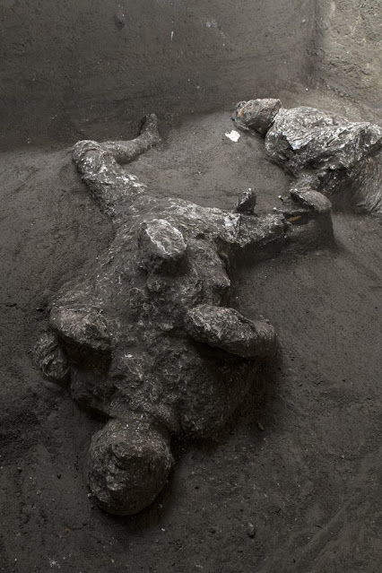 The bodies of a 'cloaked man and his slave' found in the Civita Giuliana Villa at Pompeii