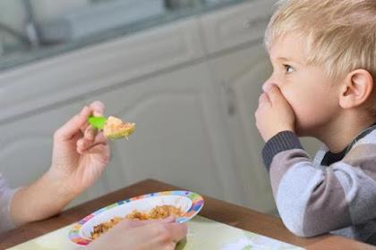 Si Kecil Tidak Nafsu Makan? Yuk, Buat Beberapa Camilan Untuknya!