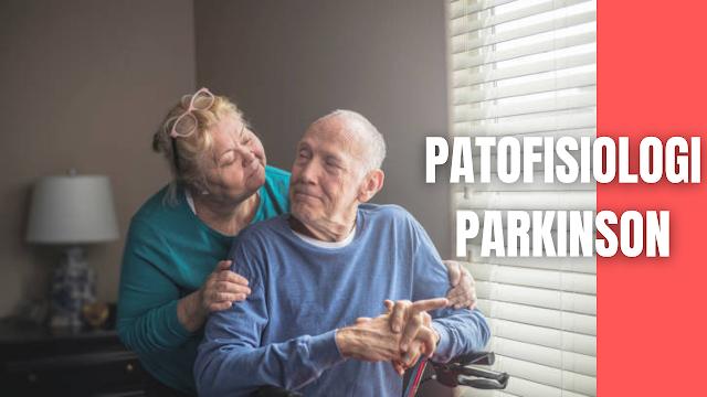 """Patofisiologi Parkinson Pada Manusia Patofisiologi Penyakit Parkinson terjadi karena penurunan kadar dopamin yang masif akibat kematian neuron di substansia nigra pars kompakta. Respon motorik yang abnormal disebabkan oleh karena penurunan yang sifatnya progesif dari neurotransmiter dopamin. Kerusakan progresif lebih dari 60% pada neuron dopaminergik substansia nigra merupakan faktor dasar munculnya penyakit Parkinson. Untuk mengkompensasi berkurangnya kadar dopamin maka nukleus subtalamikus akan overstimulasi terhadap globus palidus internus (GPi). Kemudian GPi akan menyebabkan inhibisi yang berlebihan terhadap thalamus. Kedua hal tersebut diatas menyebabkan under-stimulation korteks motorik.  Substantia nigra mengandung sel yang berpigmen (neuromelanin) yang memberikan gambaran """"black appearance"""" (makroskopis). Sel ini hilang pada penyakit Parkinson dan substantia nigra menjadi berwarna pucat. Sel yang tersisa mengandung inklusi atipikal eosinofilik pada sitoplasma """"Lewy bodies"""".  Berkurangnya neuron dopaminergik terutama di substansia nigra menjadi penyebab dari penyakit Parkinson. Terdapat tiga kelompok neuron utama yang mensintesis dopamin yaitu substansia nigra (SN), area tegmentum ventral (VTA), dan nukleus hipotalamus, sedang kelompok neuron yang lebih kecil lagi adalah bulbusolfaktorius dan retina.  Neuron dari SN berproyeksi ke striatum dan merupakan jalur paling masif meliputi 80% dari seluruh sistem dopaminergik otak. Proyeksi dari VTA memiliki dua jalur yaitu jalur mesolimbik yang menuju sistem limbik yang berperan pada regulasi emosi dan motivasi serta jalur mesokortikal yang menuju korteks prefrontal. Neuron dopaminergik hipotalamus membentuk jalur tuberinfundibular yang memiki fungsi mensupresi ekspresi prolaktin.  Terdapat dua kelompok reseptor dopamin yaitu D1 dan D2. Keluarga reseptor dopamin D2 adalah D2, D3, D4. Ikatan dopamin ke reseptor D2 akan menekan kaskade biokemikal postsinaptik dengan cara menginhibisi adenilsiklase. Keluarga reseptor do"""
