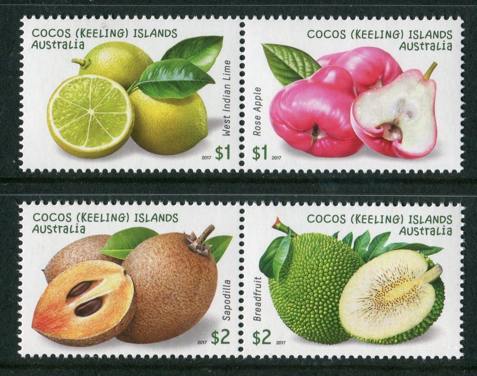 Rose Apple Fruit Australia