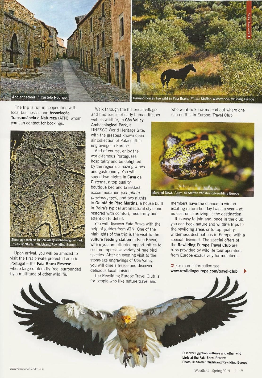 5e231147b2 A notícia inclui um conjunto de sugestões para desfrutar da paisagem e da  região e faz ainda menção ao último grande prémio do Travel Club Rewilding  Europe