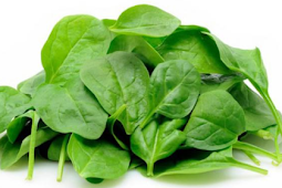 Benefits of Natural Spinach in food for the body