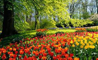 Poemas cortos a la primavera