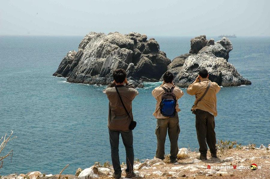 Parque Nacional Isla Madeleine, Senegal