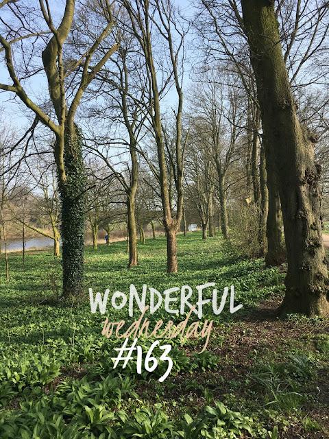 Wonderful Wednesday #163