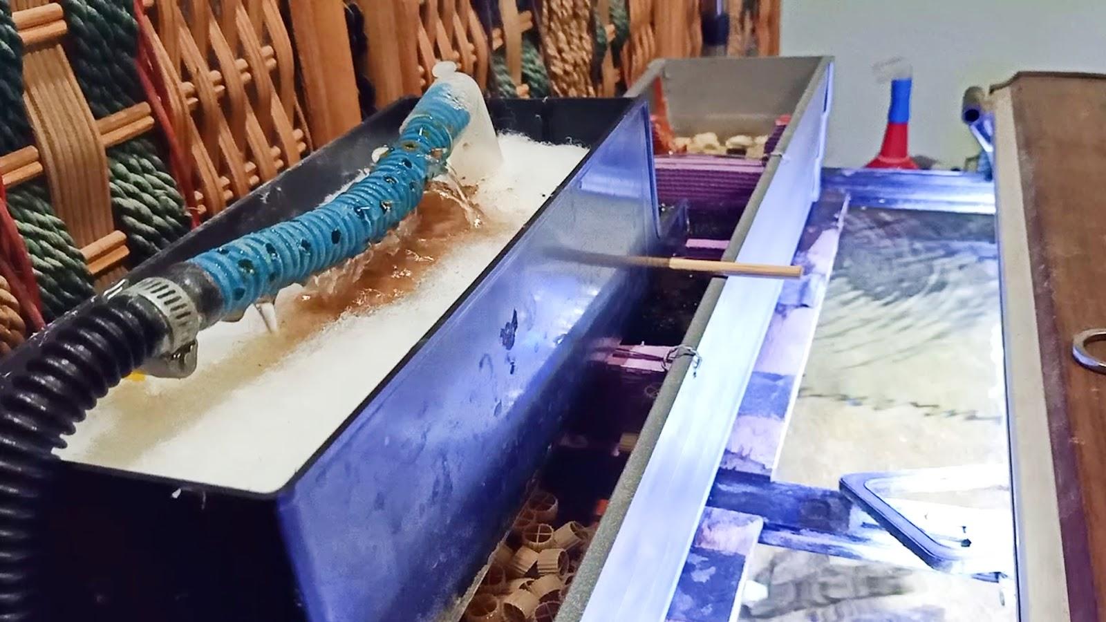 Susunan Isi Box Filter Aquarium Unsur