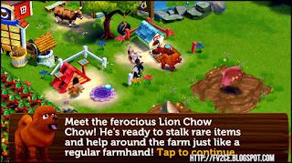 fv2ce, a brown fur lion chow chow dog on a farm