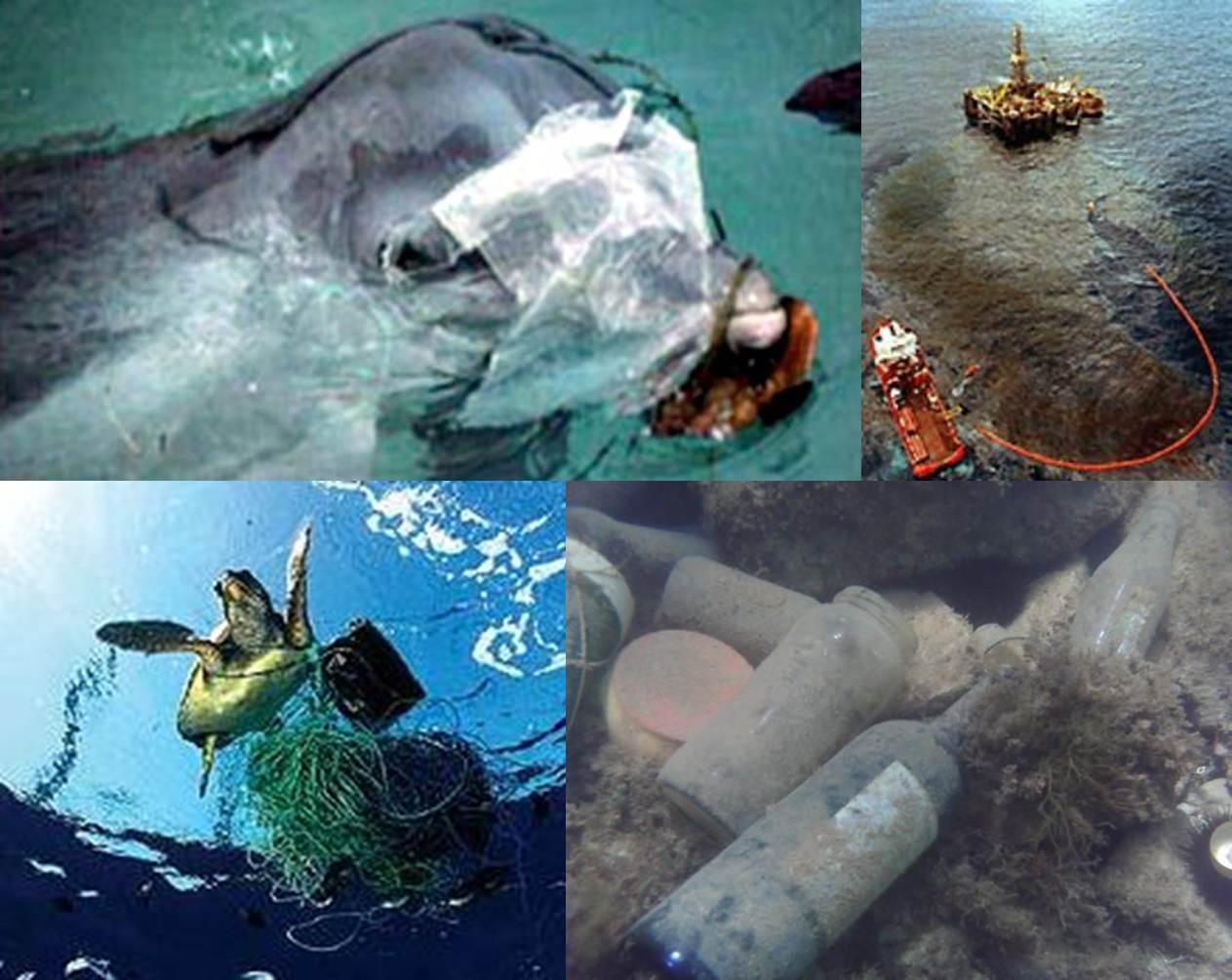 LA CONTAMINACIÓN DE LOS MARES Y OCEANOS