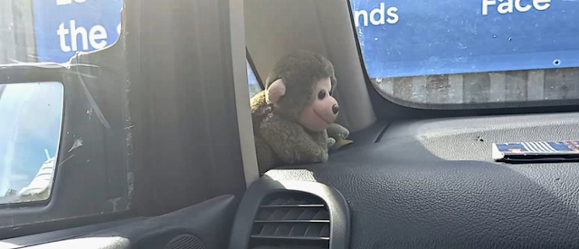 Another monkey soft toy