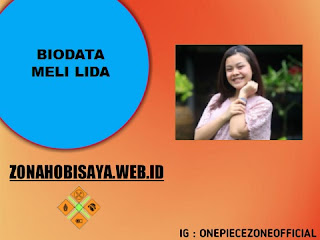 PROFIL : MELI LIDA