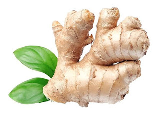 Ginger-Spice-Planet-Healthiest-Herbs