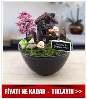 minyatür bahçe çeşitleri