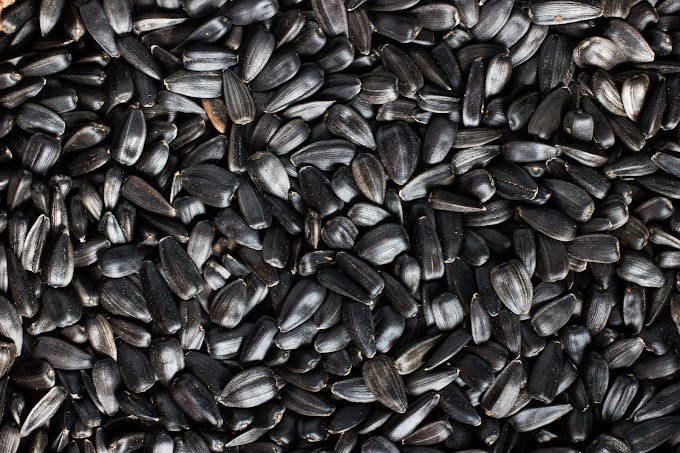 IMPORTANCE OF BLACK SEED