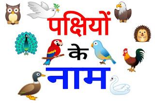 पक्षियों के नाम हिंदी और अंग्रेजी में [Birds Name In Hindi And English]