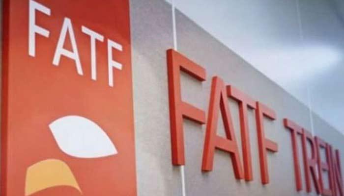 FATF Full Form in Hindi - FATF संगठन क्या है?