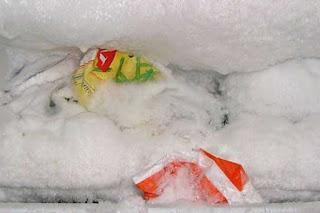 5 Tips Menghilangkan Bunga Es di Freezer Kulkas, Gak Sulit!