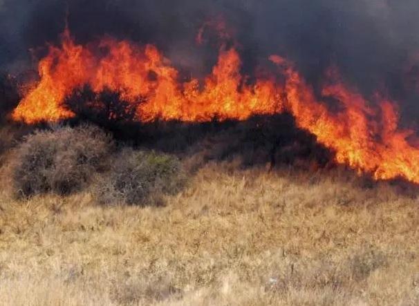 Incendio, quema