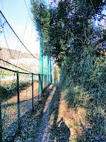 ゴルフ場の安全策とネットと脇道