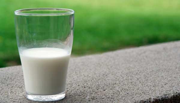 keunggulan dan manfaat susu organik untuk anak