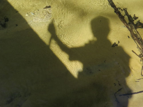 shadow of a hiker