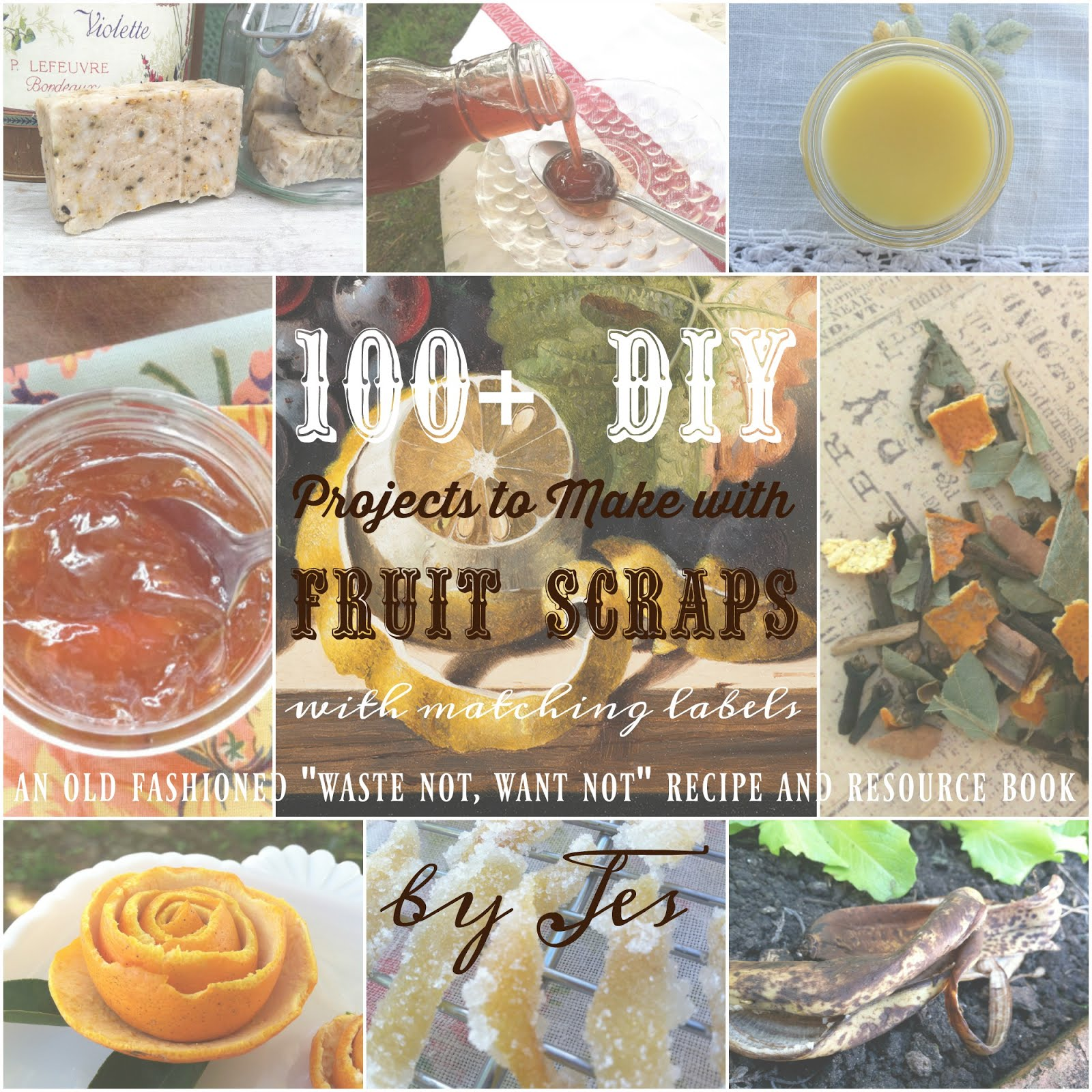 100 DIY Projects to Make w/Fruit Scraps