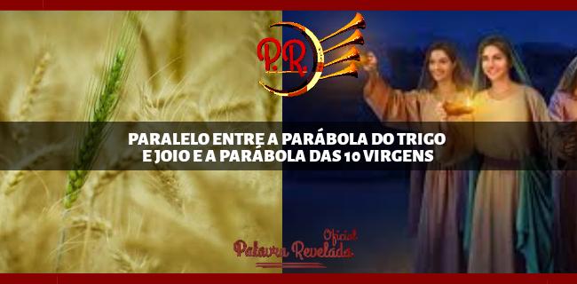PARALELO ENTRE A PARÁBOLA DO TRIGO E JOIO E A PARÁBOLA DAS 10 VIRGENS