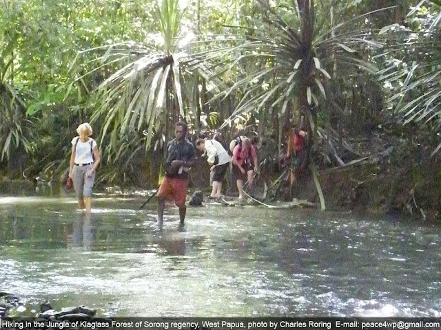 European ladies walking in the forest of Sorong, Indonesia