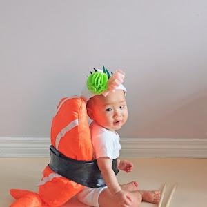 DIY Sushi Baby Costume