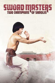 2 Campeões de Shaolin Torrent – WEB-DL 1080p Tri Áudio