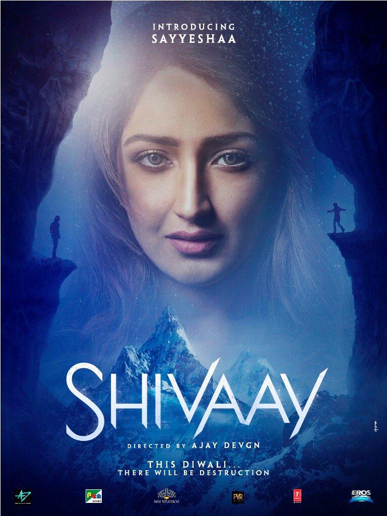 Shivaay-Movie-Sayyeshaa-Sehgal-First-Look