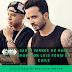 Daddy Yankee no hará show con Luis Fonsi en Chile