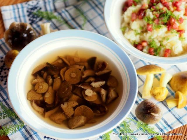 polewka z gasek, gaski zielonki, gaska zielona, prosnianki, kuchnia regionalna, kurpie, zupa kurpiowska, domowe jedzenie, zupa dnia, rosolek grzybowy, grzyby, grzyb, zieleniatki