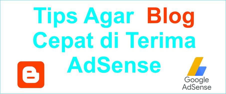 Tips agar blog cepat diterima oleh Adsense