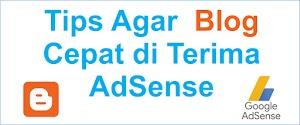 Update Tips agar blog cepat diterima oleh Adsense